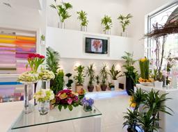 Мебель для цветочных магазинов