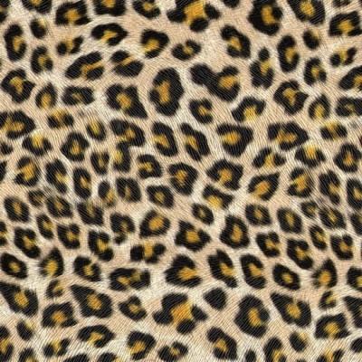Z860 Leopard зеркало настенное